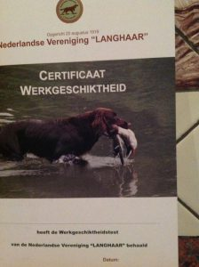 Werkgeschiktheidscertificaat Silke van de Westkerkseberg